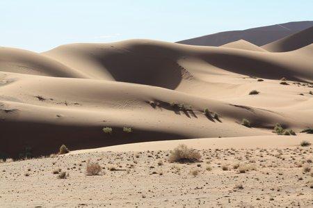 Hidden Vlei im Wüstengebiet von Sossusvlei