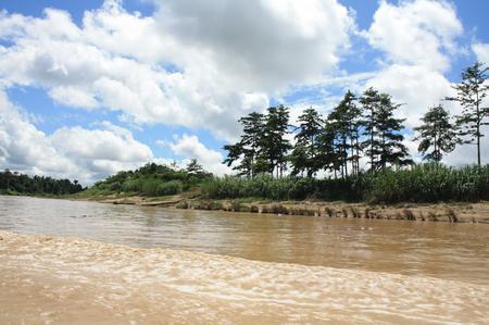 Fluss Kinabatangan