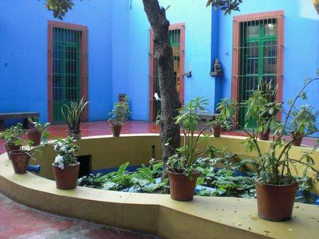 Das Blaue Haus in Mexiko City