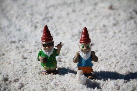 Die Gnomads im Salz