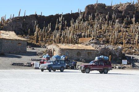 Bolivien - Im Land der Kakteen