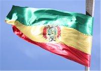 Boliven-Flagge