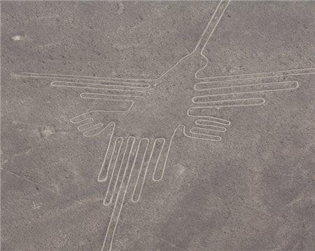 Vogel von Nazca