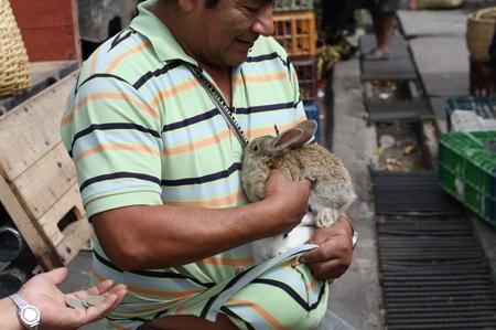 Tiermarkt in Riobamba