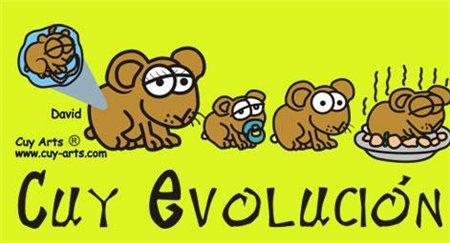 Peru Evolution