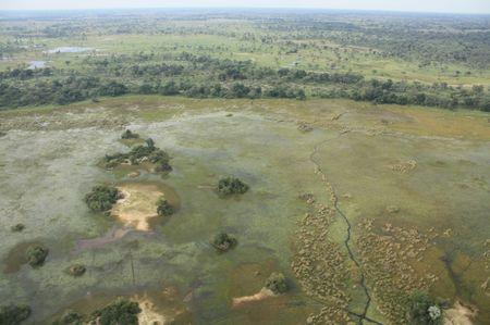 Das Okavango von oben
