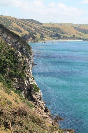 Südostküste Neuseelands