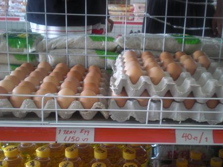 Eier auf Vanuatu